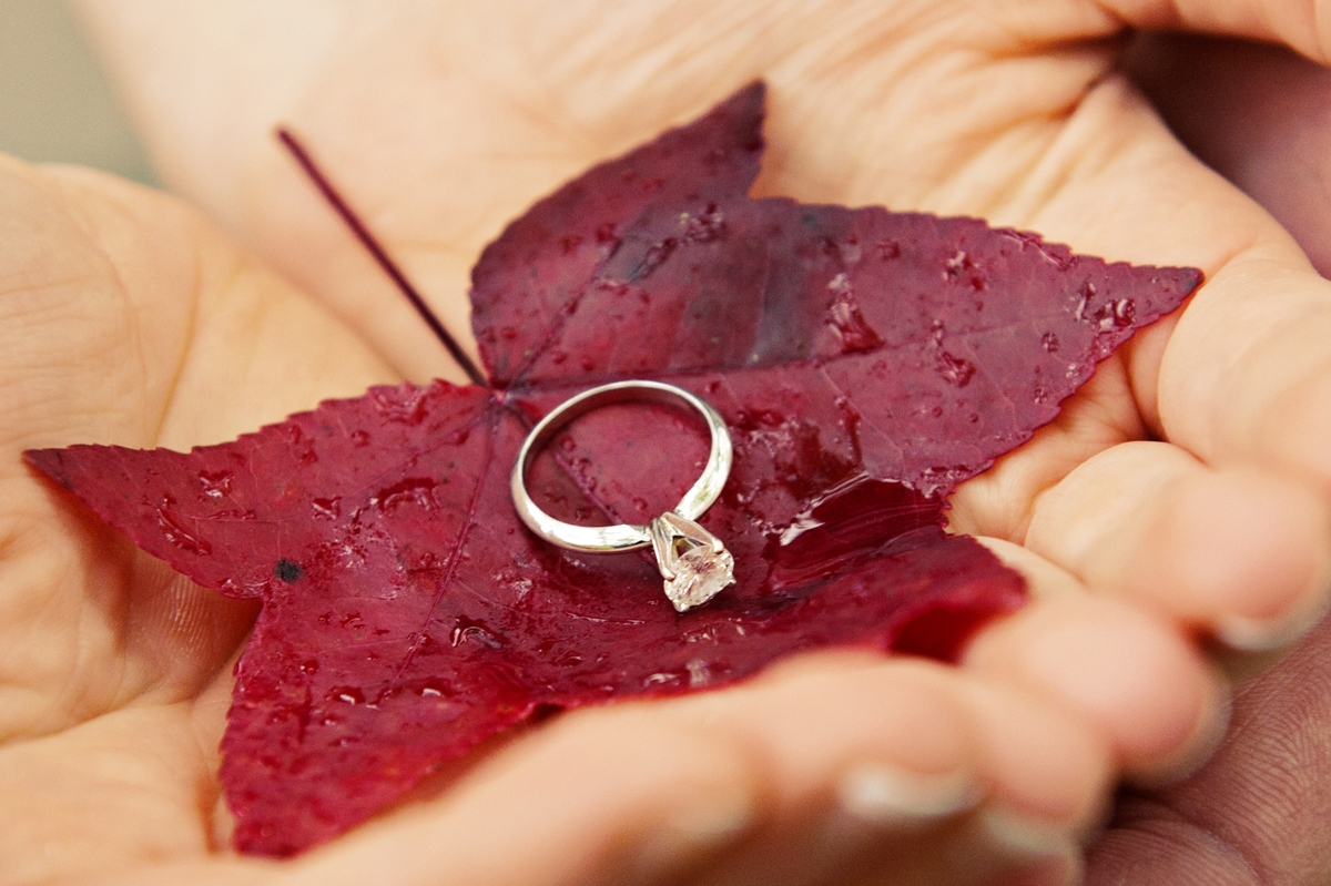 Engagement Photography - Hands holding red leaf with engagement ring